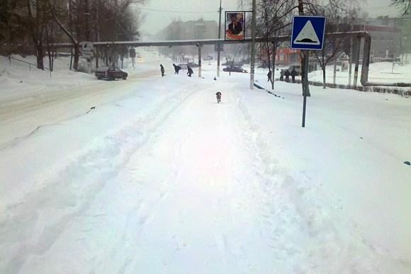 Улица Тульская, Суворов