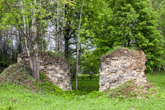 Остатки насыпи узкоколлейной железной дороги Тула-Лихвин
